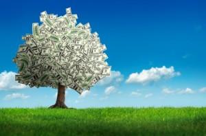 money-treey-stock